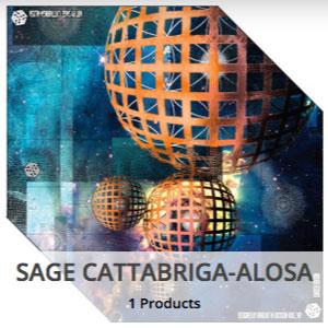 avalon7_artist_collective_sage_cattabriga_alosa