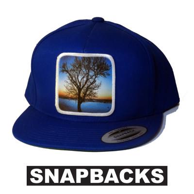 avalon7 snapback hat