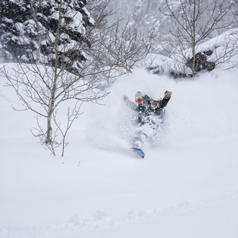 Activate the white room. Jason Budd rides the light @jacksonhole #liveactivated #staystoked #snowboarding