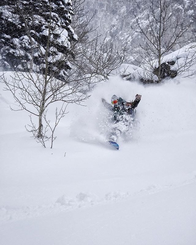 Deep dreams. Rider @jbudds1 @jacksonhole #avalon7 #seekthestoke #snowboarding